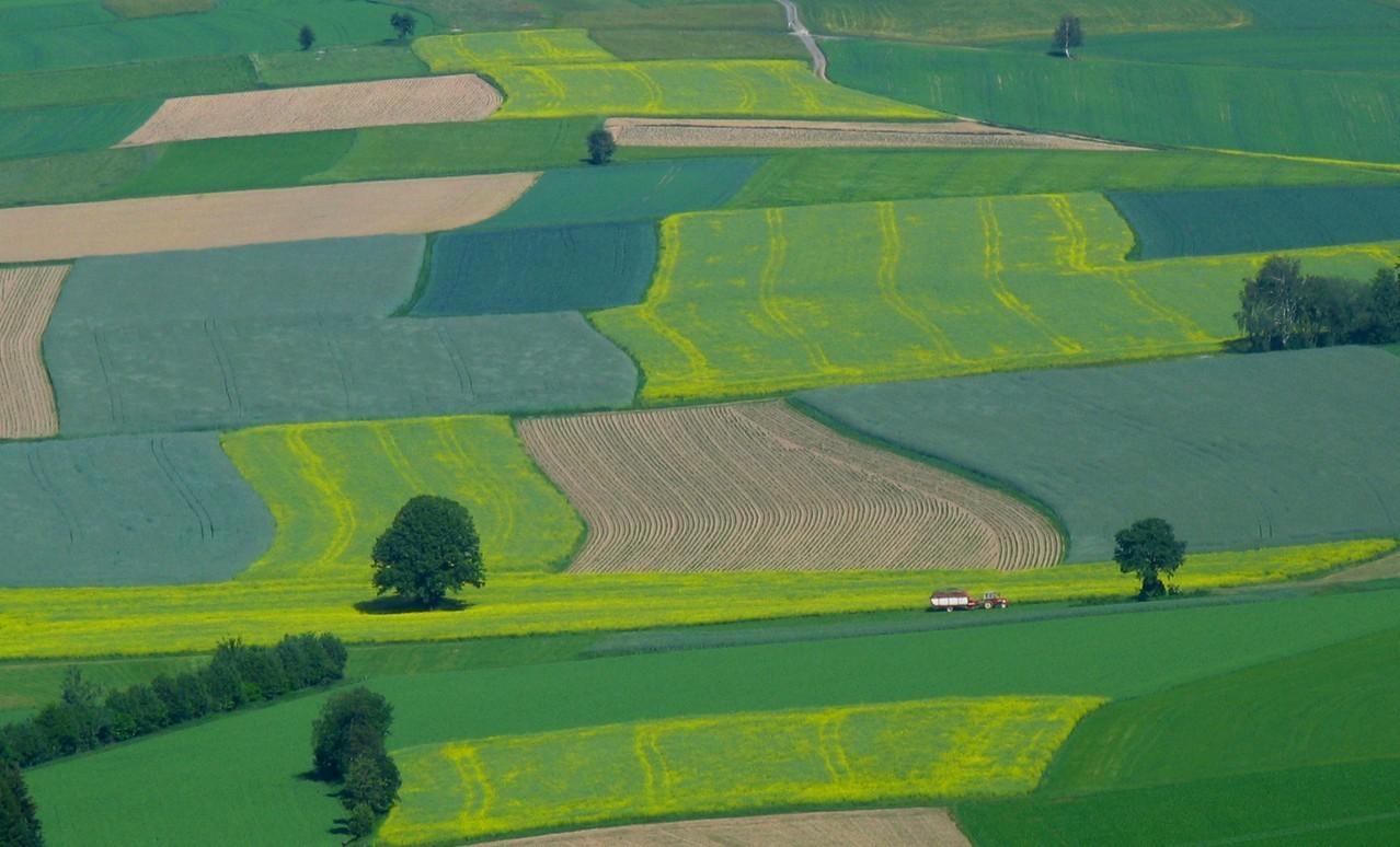 Rolnictwo integrowane – rozwój,